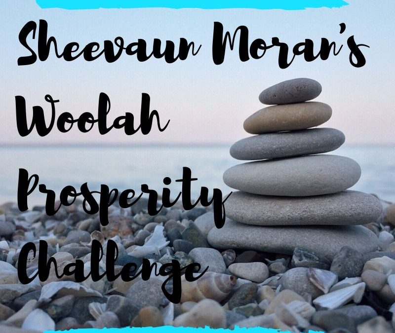 Sheevaun Moran's Woolah Prosperity Challenge